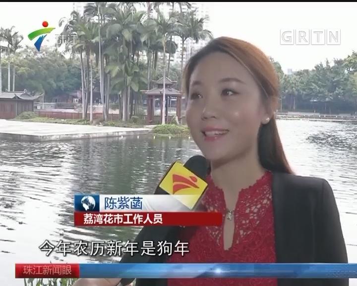 """走马观""""花"""":广州水上花市在荔枝湾"""