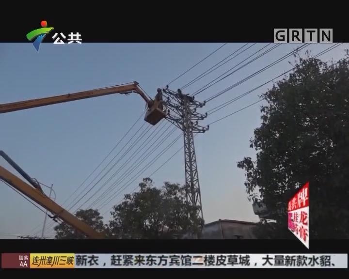 东莞:男子爬上电线塔 大喊大叫情绪激动