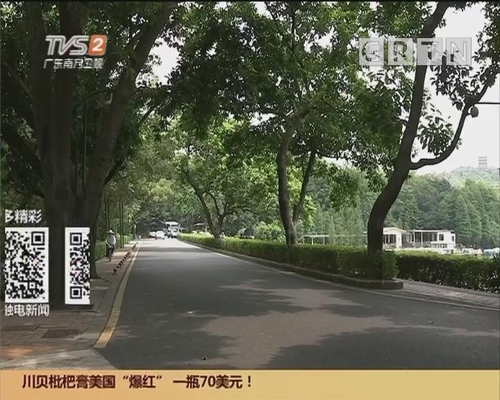 广州花园选址敲定:广州花园落户白云山南门以南