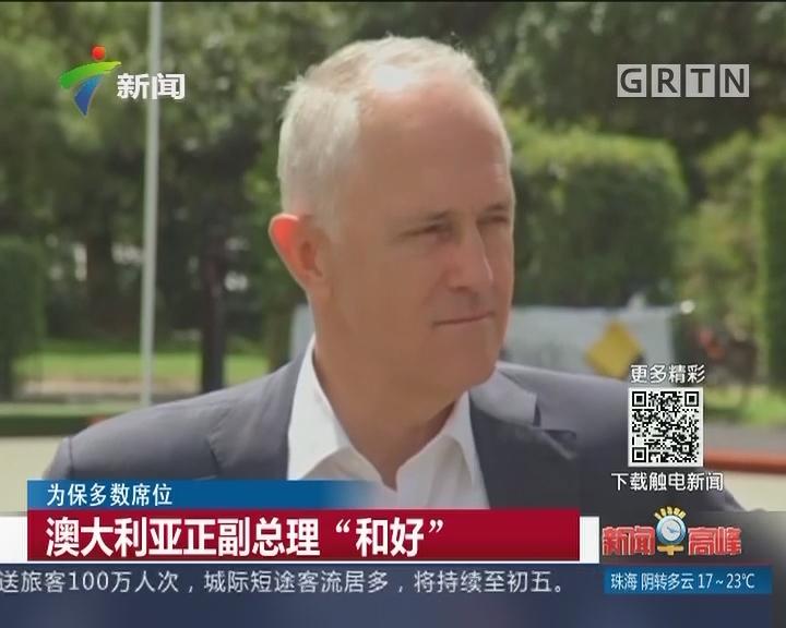 """为保多数席位:澳大利亚正副总理""""和好"""""""