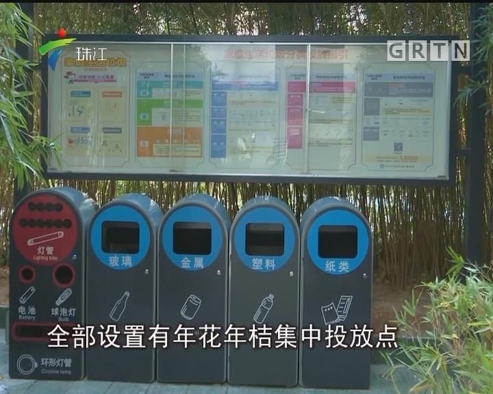 """深圳:""""过气""""年桔不再""""无处安放""""可预约回收回种"""