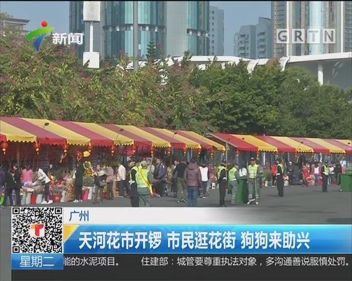 广州:天河花市开锣 市民逛花街 狗狗来助兴