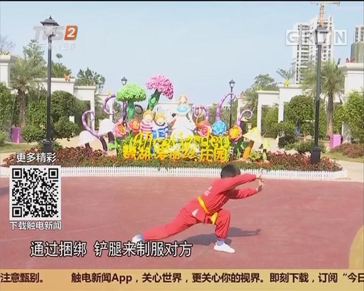 高明鹭湖:睇国家非遗 狗拳闹新春