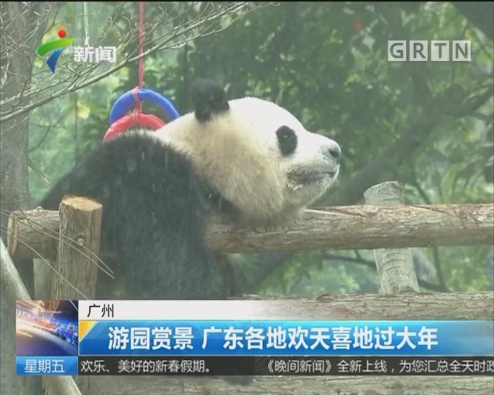 广州:游园赏景 广东各地欢天喜地过大年
