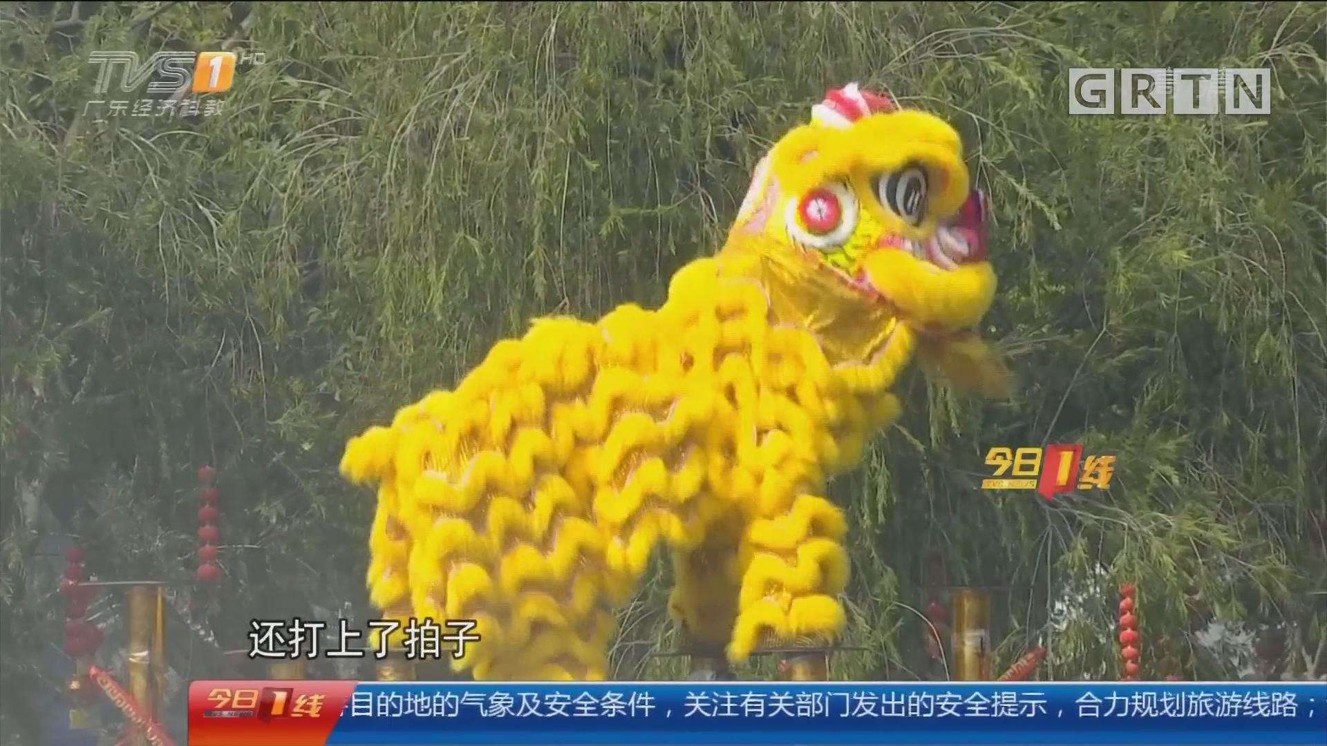 广州番禺:醒狮别样贺岁 水上登梅花桩