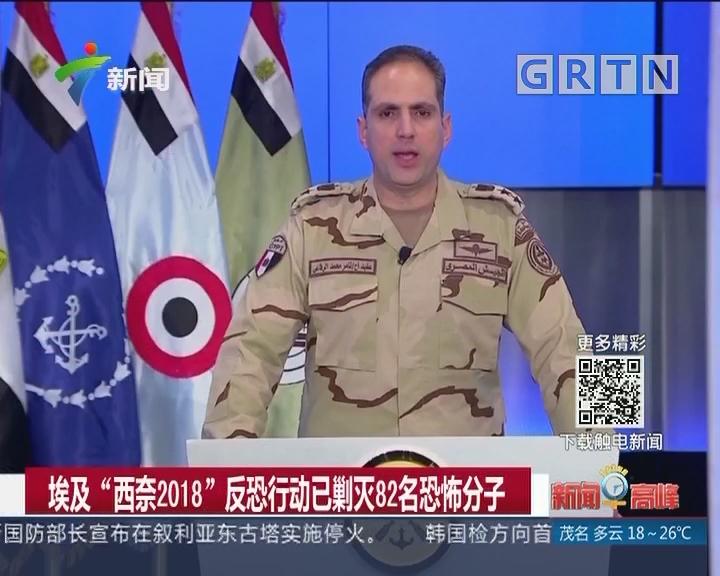 """埃及""""西奈2018""""反恐行动已剿灭82名恐怖分子"""