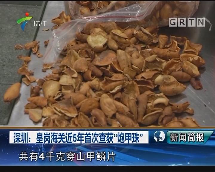 """深圳:皇岗海关近5年首次查获""""炮甲珠"""""""