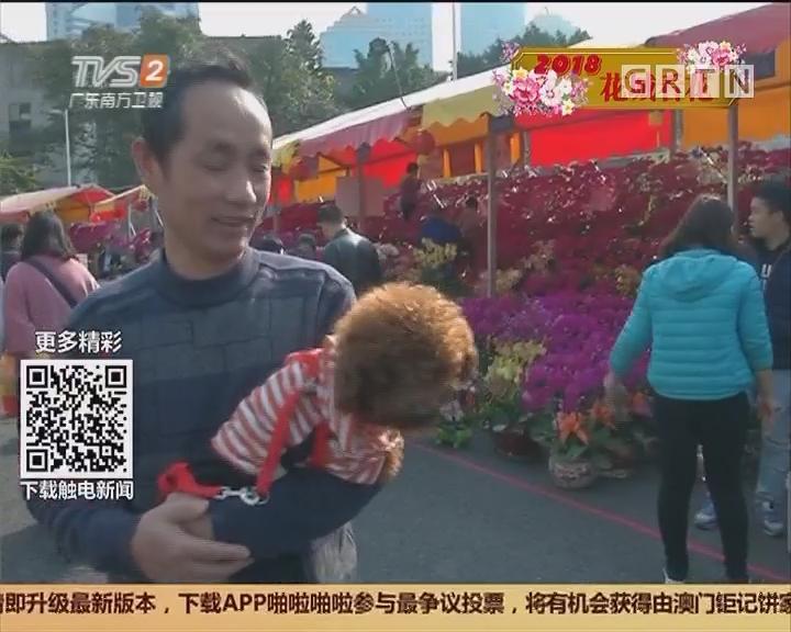 广州:天河花市今日开锣