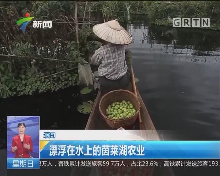 缅甸:漂浮在水上的莱茵湖农业