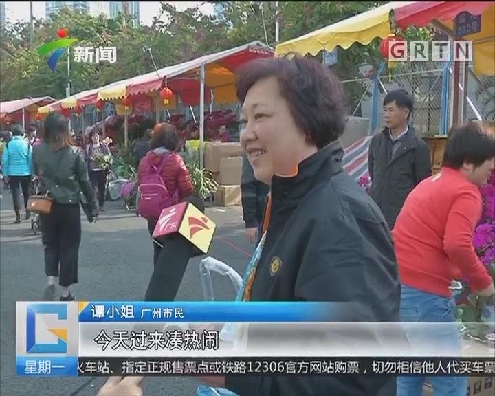 广州天河花市今日开锣 狗狗也来凑热闹