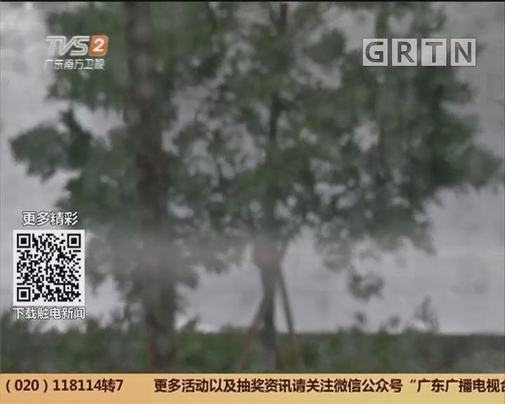 广东:回南天来了吗?未来三天阴有阵雨