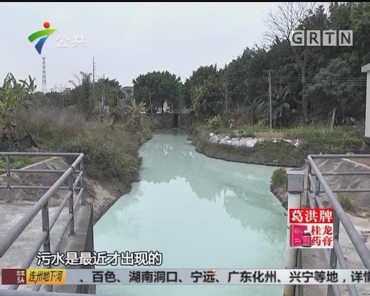 """佛山:村中惊现""""奶绿河"""" 怀疑有人偷排"""