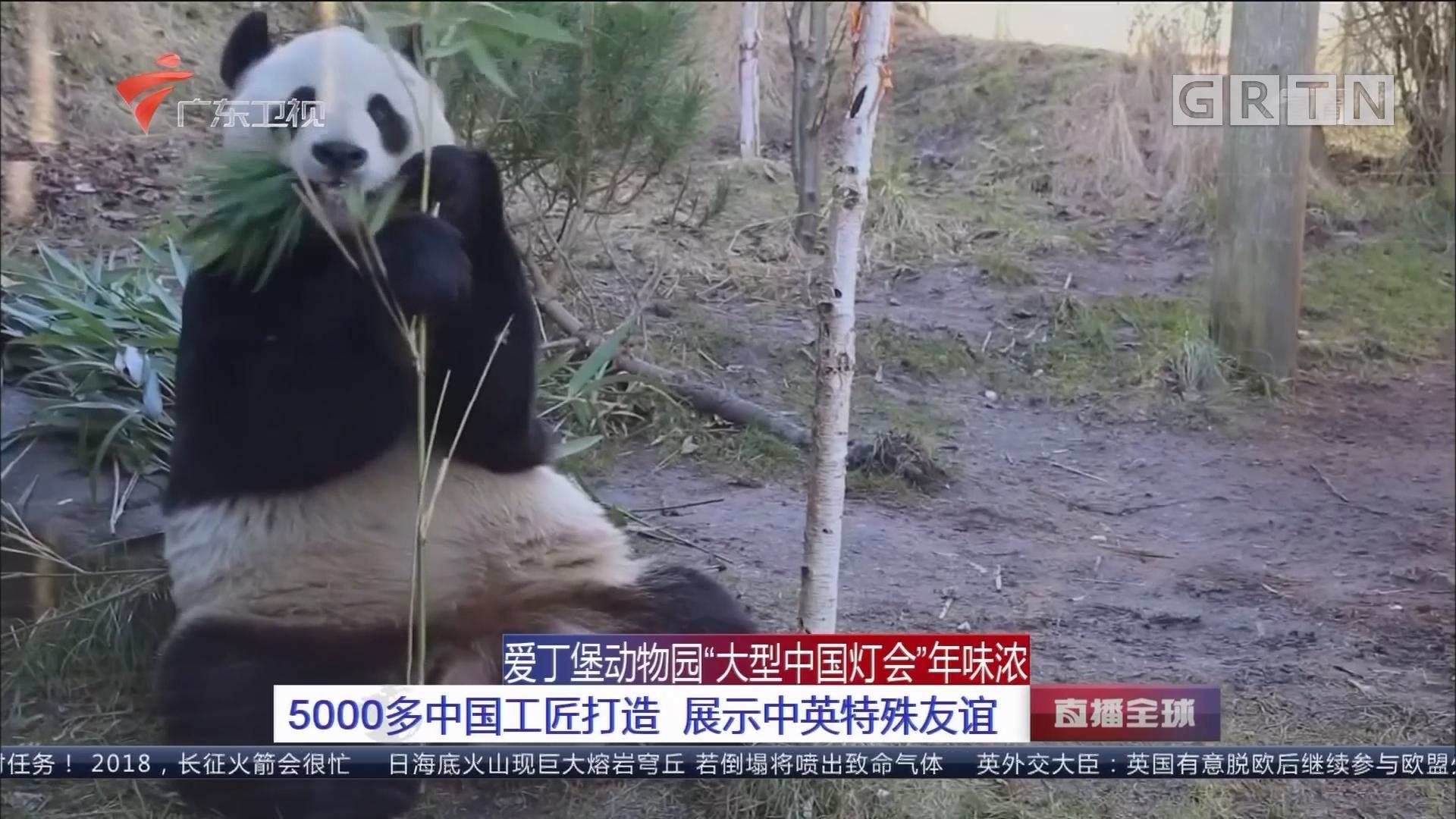 """爱丁堡动物园""""大型中国灯会""""年味浓:5000多中国工匠打造 展示中英特殊友谊"""