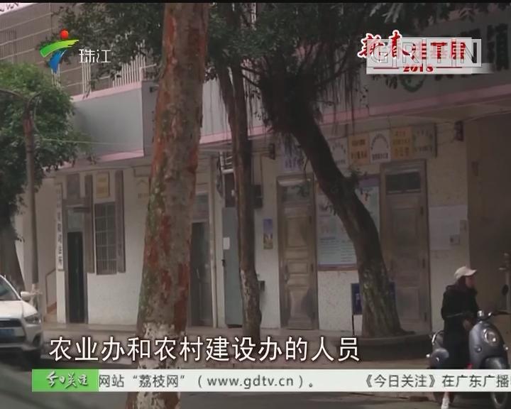 记者调查:吴川吴阳镇政府部门节后基本到岗