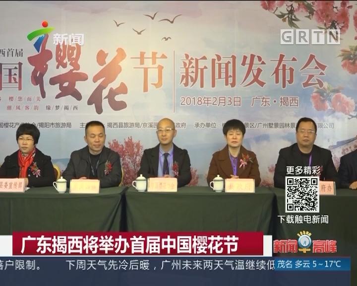 广东揭西将举办首届中国樱花节