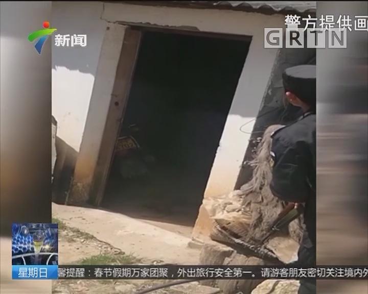云南:饥饿藏獒发狂撕咬主人 民警6枪击毙