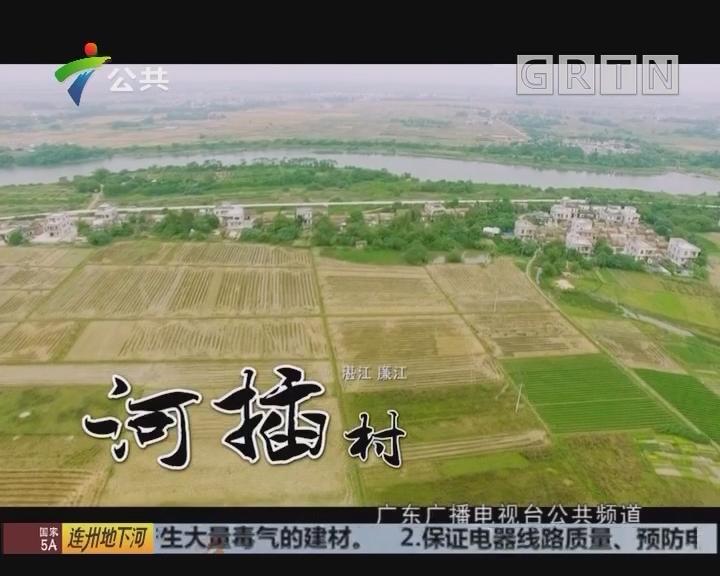 小村之恋——湛江廉江河插村