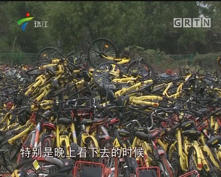 """广州:共享单车""""坟场""""半夜滴滴叫"""