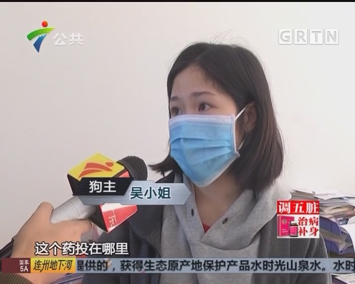 广州:小区遛狗后 三只狗同时死亡