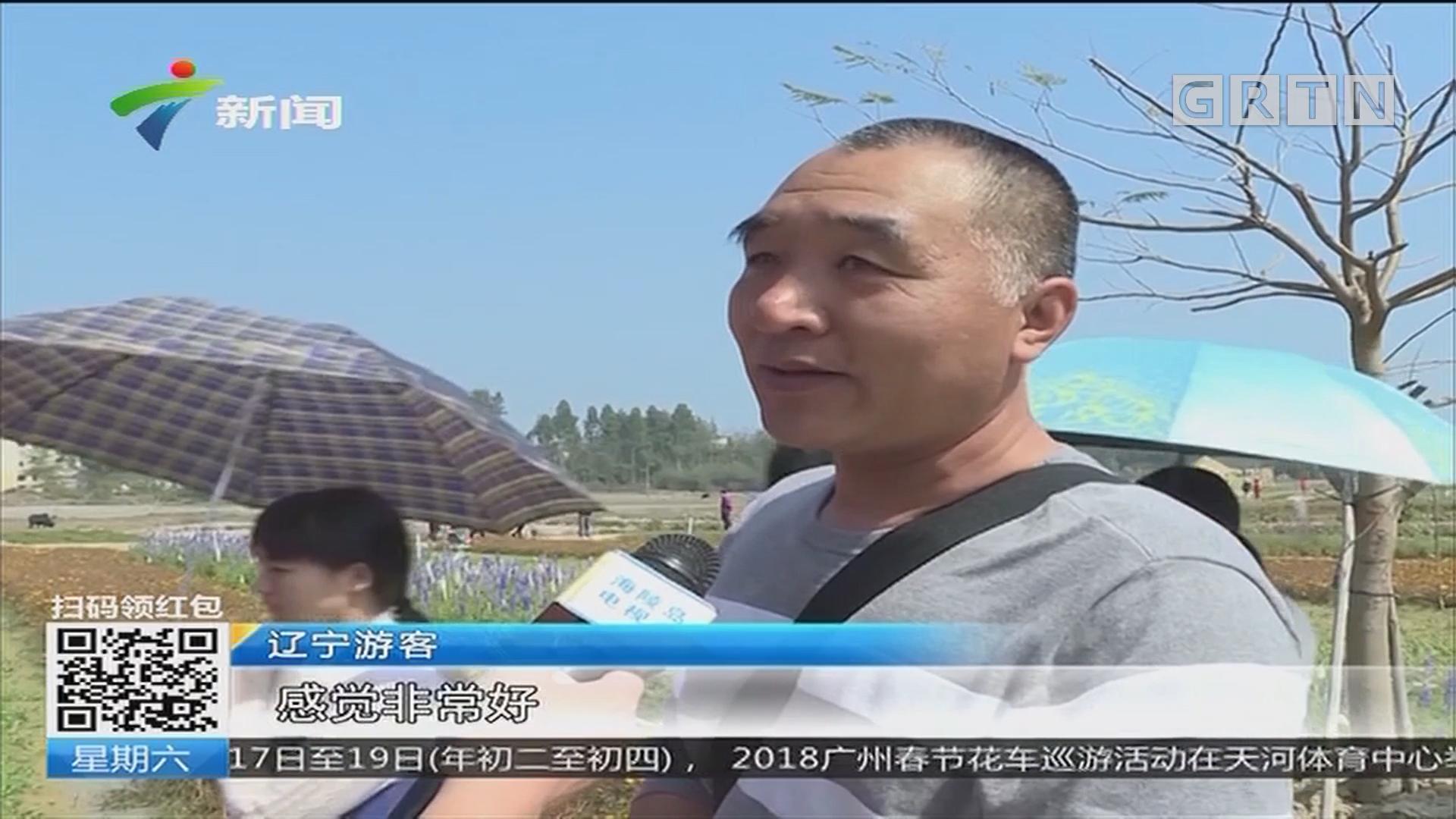 深圳:莲花北村:迎新大巡游 欢乐闹新春