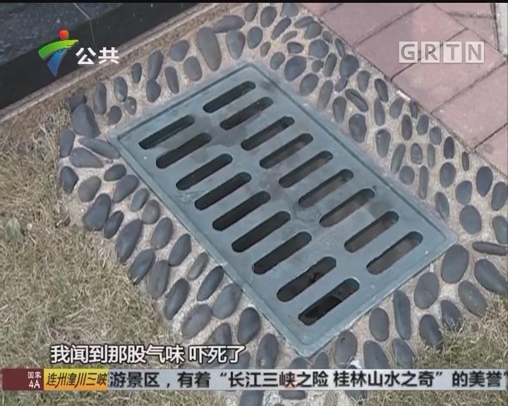 住户求助:有人将汽油排入小区下水道