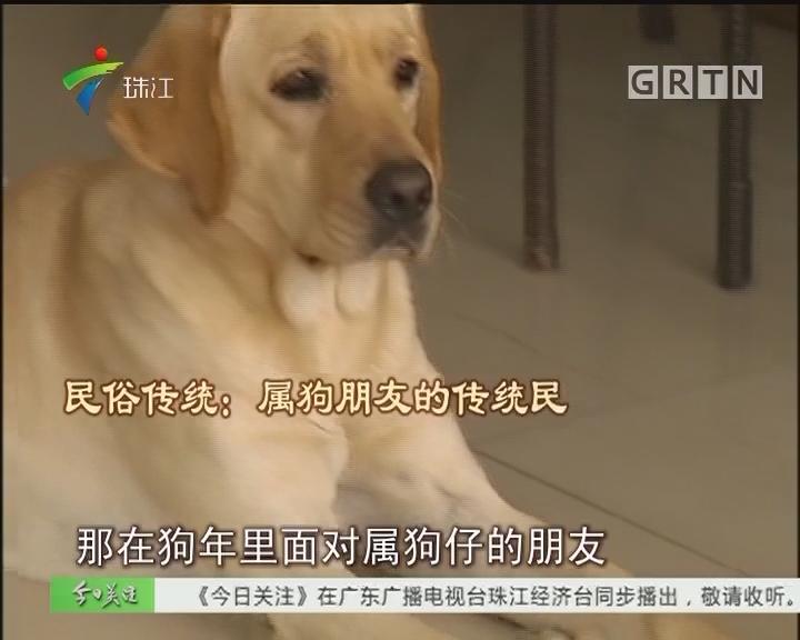 狗年说狗:传统民俗话你知