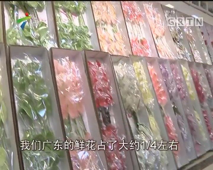 """""""花城看花"""":花花世界 南粤花卉产业蓬勃发展"""