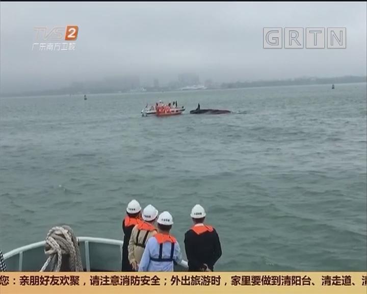 湛江徐闻撞船事故:两船相碰 5人落水2人下落不明