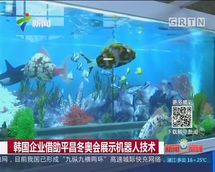 韩国企业借助平昌冬奥会展示机器人技术