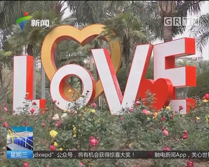 """广州越秀区:2月14日登记结婚 修得爱情""""正果"""""""