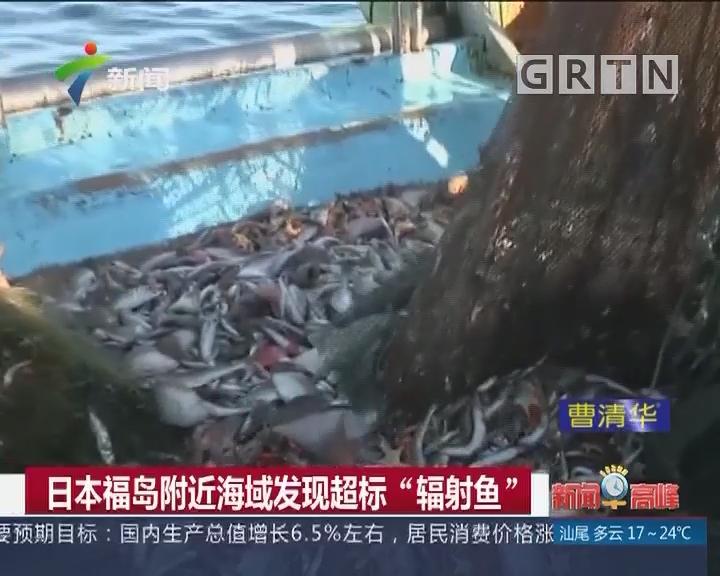 """日本福岛附近海域发现超标""""辐射鱼"""""""