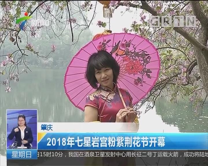 肇庆:2018年七星岩宫粉紫荆花节开幕
