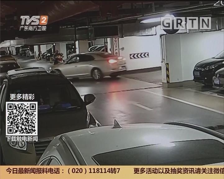 """深圳:女醉猫闯祸 事故前还""""求""""人报警"""