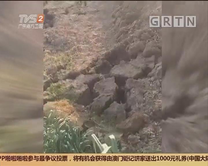 """广东揭阳:菜地顷刻间""""长高""""3米 传出虎啸般声响"""