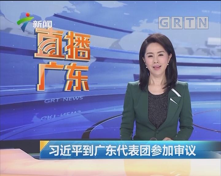习近平到广东代表团参加审议