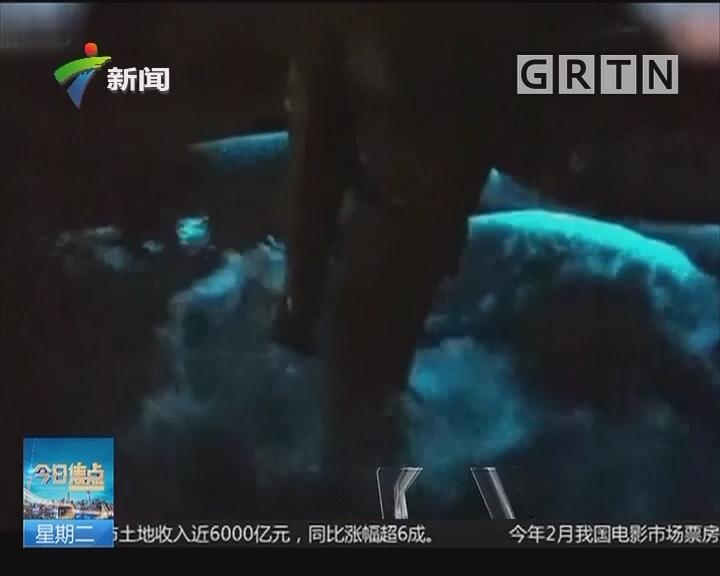 """深圳大鹏新区:海岸惊现神奇""""夜光海"""" 太美了!"""