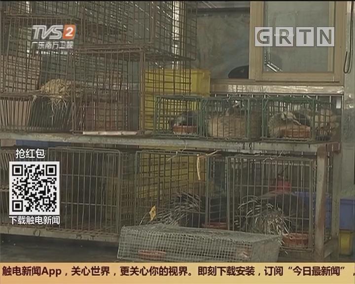 南海:公开售卖野生动物?执法部门突击检查