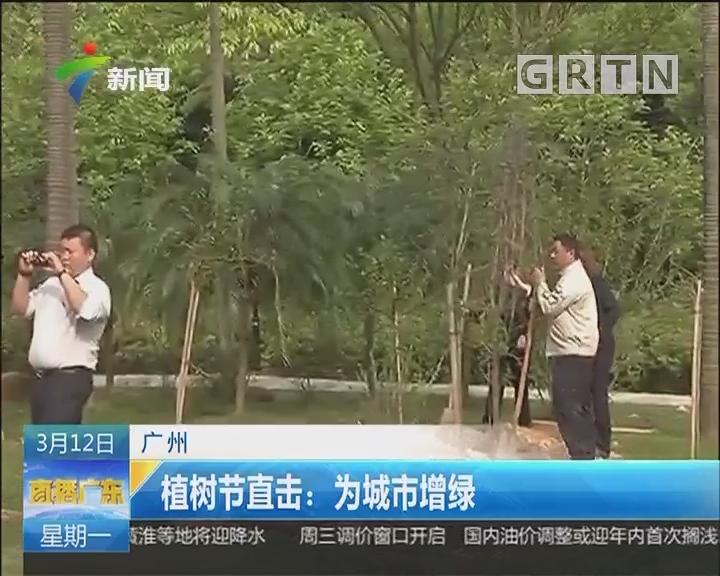 广州:植树节直击 为城市增绿