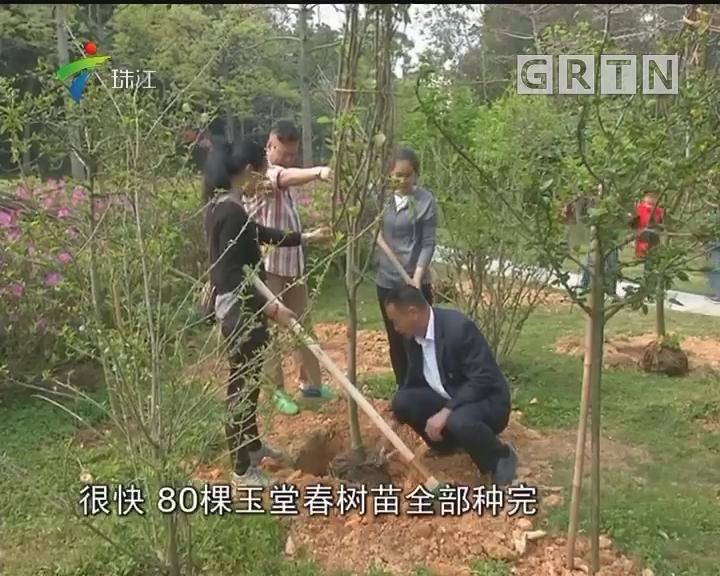 植树节:市民可到白云山景区认种树木
