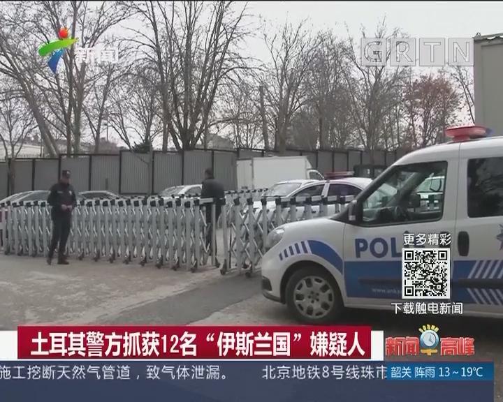 """土耳其警方抓获12名""""伊斯兰国""""嫌疑人"""