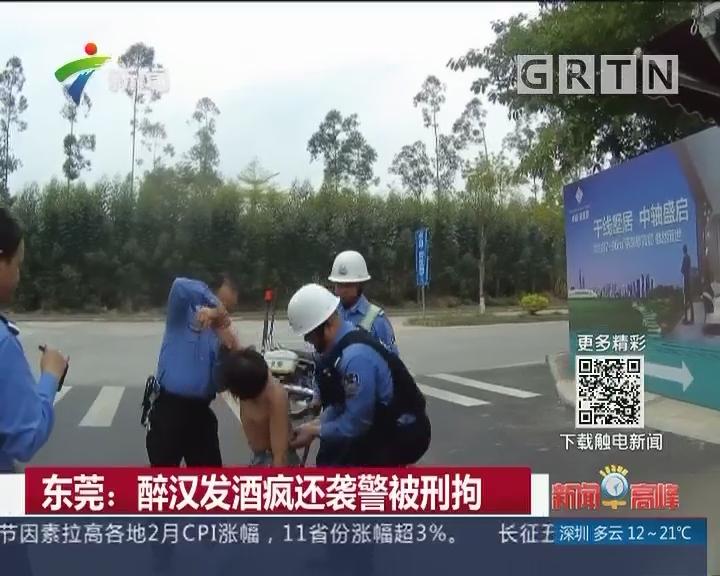 东莞:醉汉发酒疯还袭警被刑拘