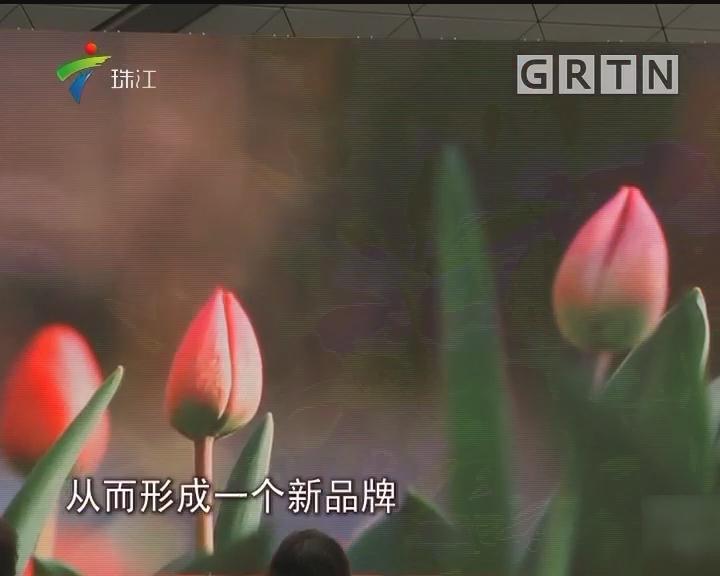 广州:努力在十年内打造成著名花城