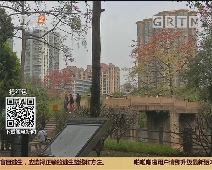 发现广州之最:最老石桥 400多岁云桂桥 隐身晓港公园内