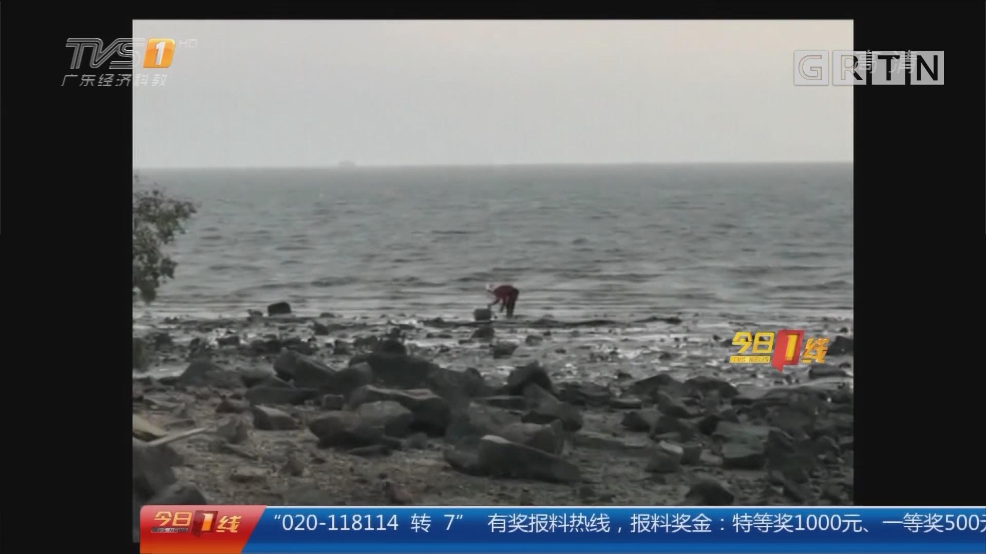 """深圳湾:海边再现偷捕""""游击队"""" 加强巡逻查处"""