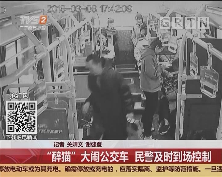 """深圳:""""醉猫""""大闹公交车 民警及时到场控制"""