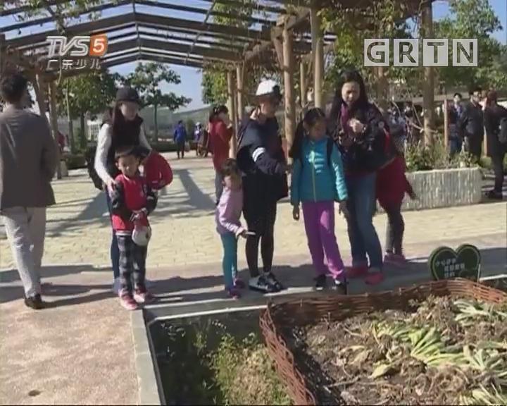[2018-03-12]南方小记者:波仔美美艺术团开展植树节活动