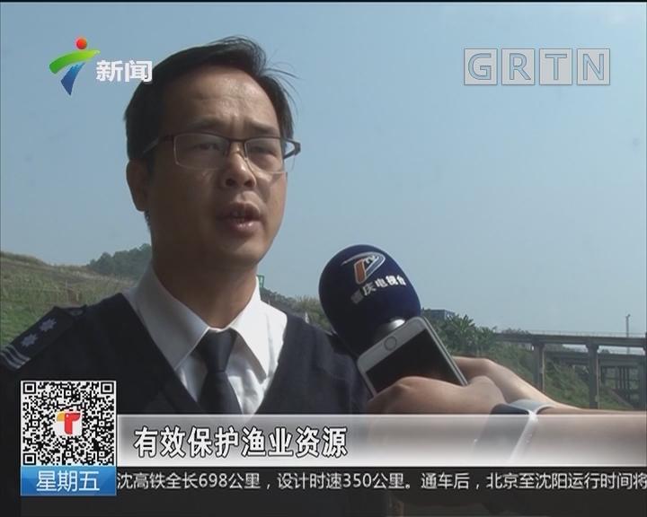 广东:珠江流域昨起进入禁渔期