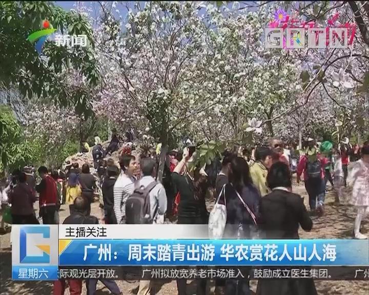 广州:周末踏青出游 华农赏花人山人海