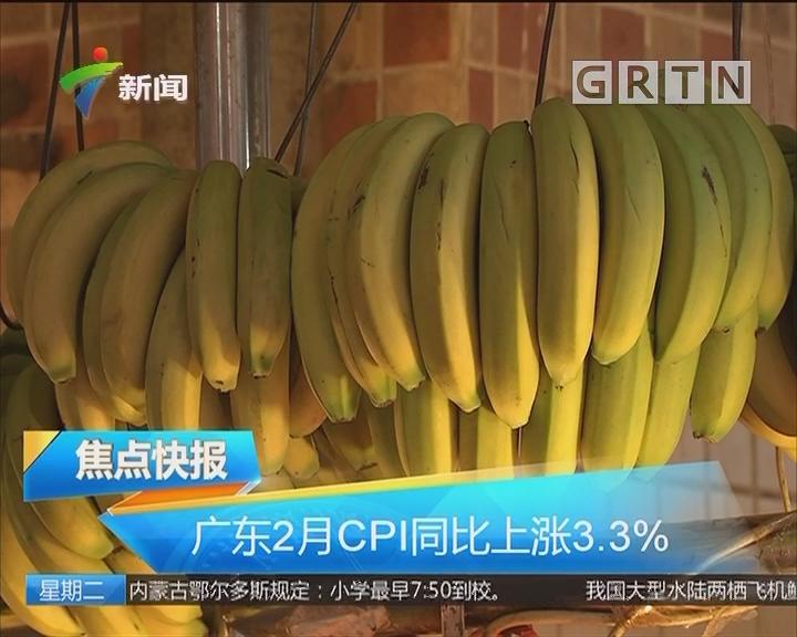 广东2月CPI同比上涨3.3%