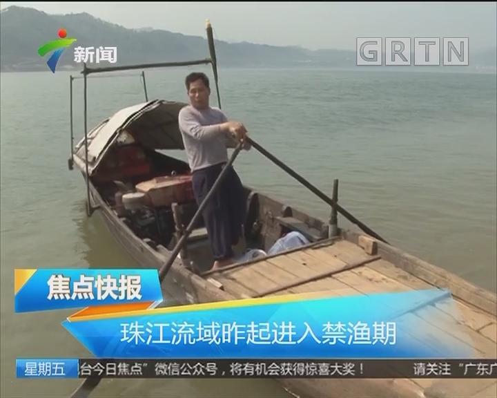 珠江流域昨起进入禁渔期